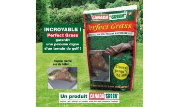 Sac de gazon Perfect Grass
