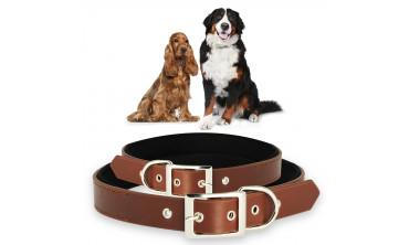 Collier pour chien ajustable