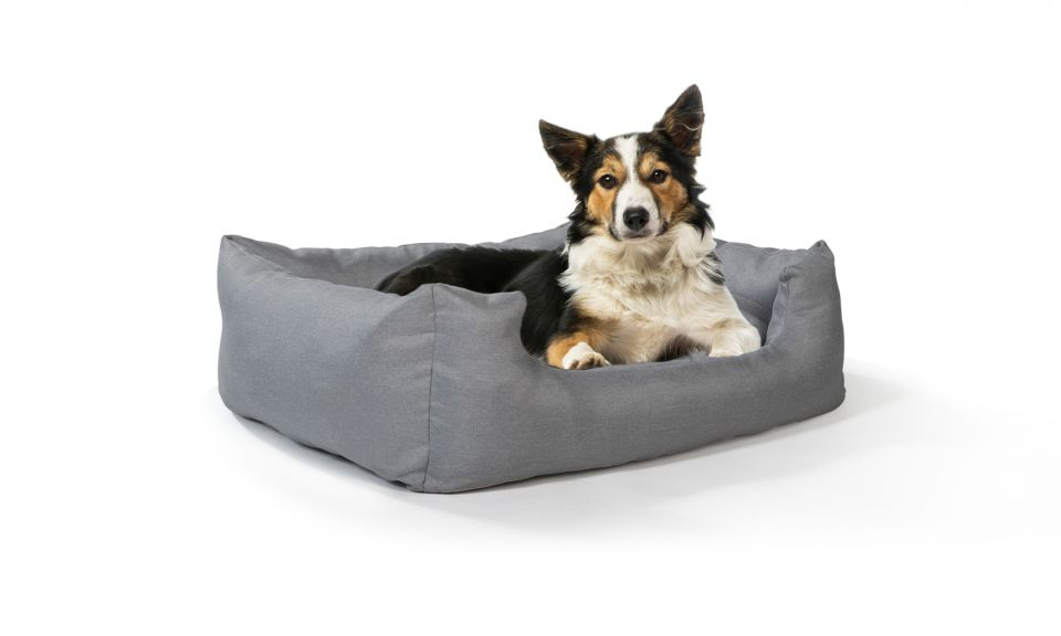 Coussin réversible chien 80x60cm